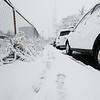 10 30 20 Lynn snow features 3