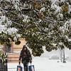 10 30 20 Lynn snow features 8