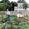 10 3 19 Swampscott giant pumpkin 15