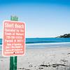 10 5 19 Nahant Short Beach body 1