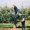 10 6 18 Peabody apple picking at Brooksby Farm 7