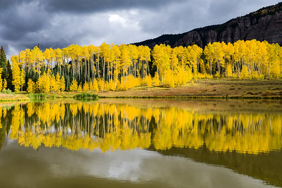 yellow aspen and Clear Lake