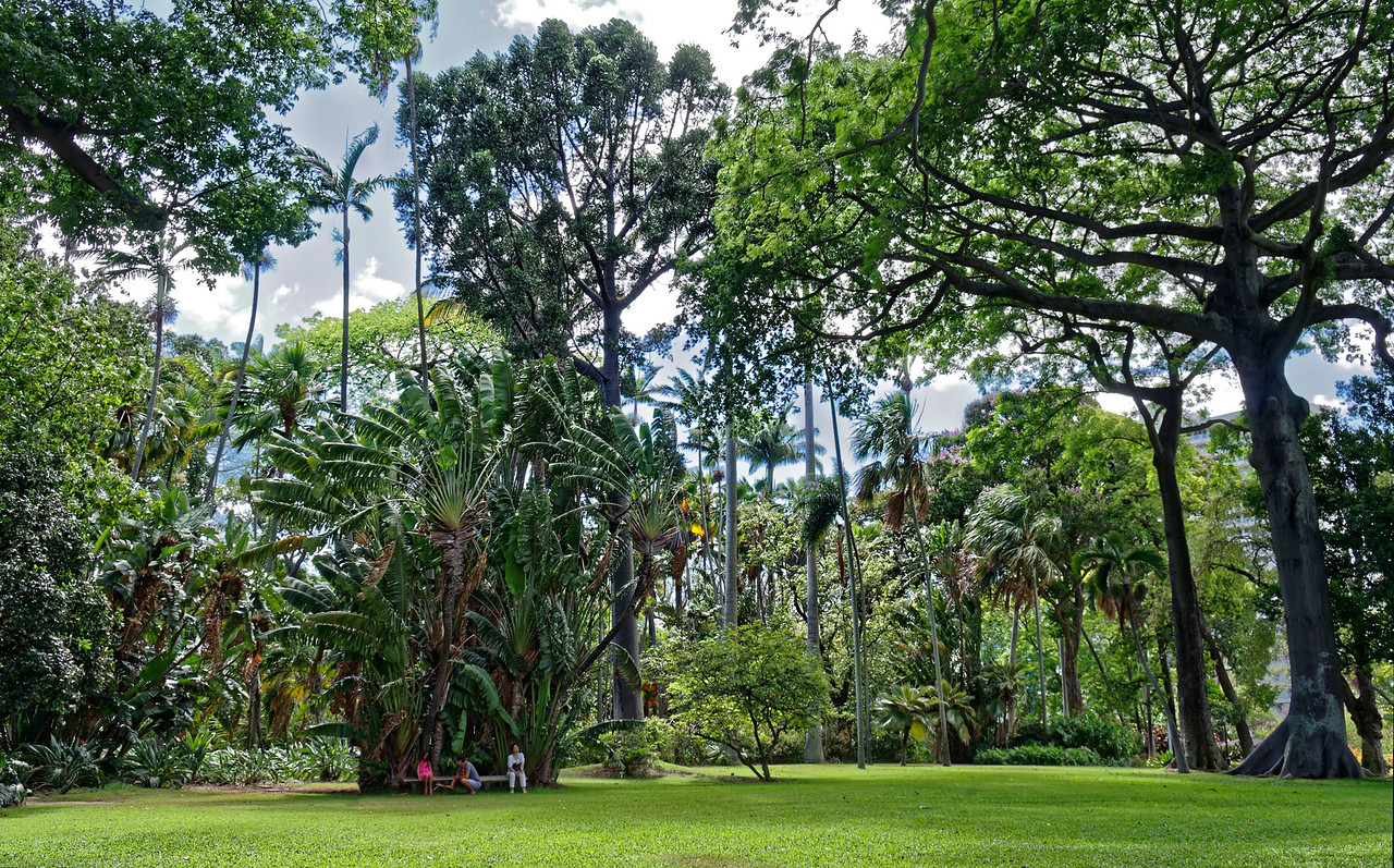 Foster Botanical Garden, Honolulu