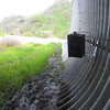 "A camera monitors activity in the underpass.<br /> <br /> The Puente Hills Landfill Native Habitat Preservation Authority manages almost 4,000 acres of land in southern Los Angeles County.  This landmass, combined with other publicly protected lands in the Puente-Chino Hills area, is a biodiversity hotspot for a number of flora and fauna, even though it is less than 30 minutes by car from downtown L.A.  The land of the Habitat Authority is bisected by Harbor Boulevard, a 4-lane road that carries approximately 30,000 vehicles per day at speeds of up to 50 MPH (Gullo 2006).  A study by researchers at California State University-Fullerton found that the incidence of road kill on Harbor Boulevard was very high relative to a larger study area (Elliott & Stapp 2007).  Surveyed road kills have included coyotes, bobcats, and American badgers.  A wildlife underpass was constructed in 2006 to mitigate wildlife mortality due to vehicles on the corridor.<br /> <br /> The underpass received a $901,000 TE grant through the MTA award process and an additional $337,000 in TE funds from the statewide pool.<br /> <br /> Website: <a href=""http://www.habitatauthority.org/harborblvdunderpass.shtml"">http://www.habitatauthority.org/harborblvdunderpass.shtml</a><br /> <br /> References:<br /> <a href=""http://www.habitatauthority.org/pdf/Harbor_Blvd_Underpass.pdf"">http://www.habitatauthority.org/pdf/Harbor_Blvd_Underpass.pdf</a><br /> <a href=""http://repositories.cdlib.org/cgi/viewcontent.cgi?article=1376&context=jmie/roadeco"">http://repositories.cdlib.org/cgi/viewcontent.cgi?article=1376&context=jmie/roadeco</a>"