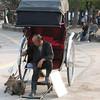 Rickshaw driver and his two pampered friends, Miyajima Island, Japan