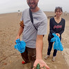 Jonathan Tressler — The News-Herald <br> Lakeland Community College environmental science professor Steve Vieira holds out a plastic tarantula toy he found while volunteering to help clean up and catalog trash in the sand at Headlands Beach State Park in Painesville Township Oct. 6