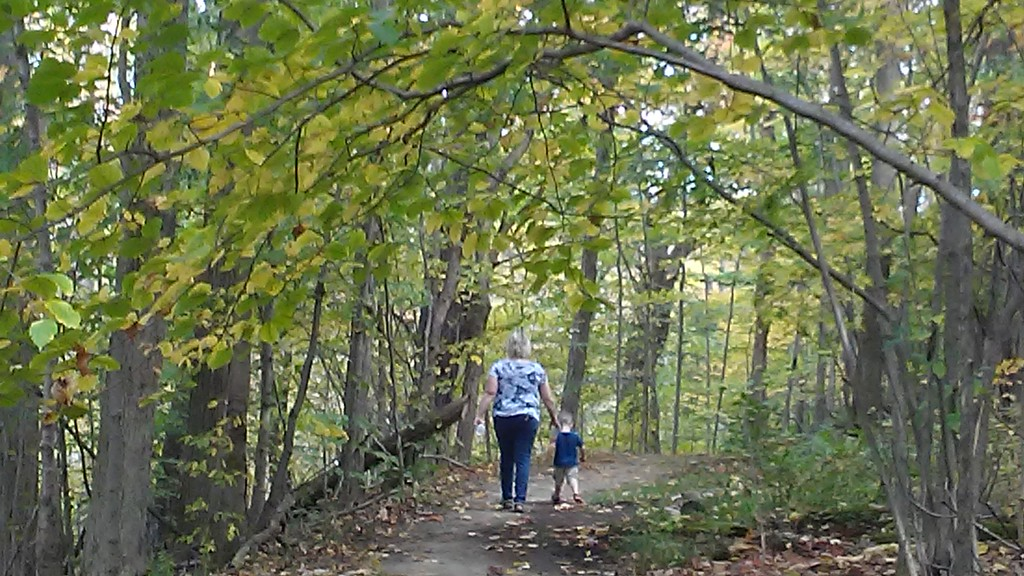 . Betsy Scott � The News-Herald <br> Visitors to Chardon Living Memorial Park on Oct. 7 enjoyed the newly refurbished trail in the woods behind the Chalet at 220 Basquin Drive.