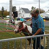 Pony rides were available at the Huntsburg Pumpkin Fest October 8. (Betsy Scott/The News-Herald)