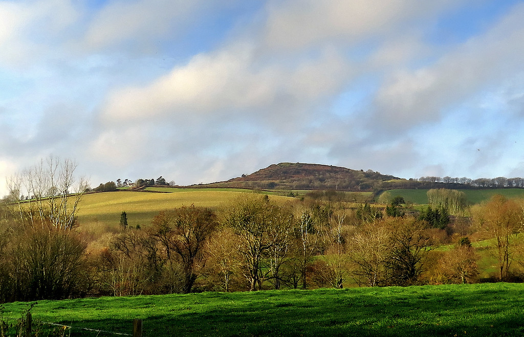 A look back towards Lewesdon Hill, the highest point in Dorset