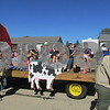 "Farming was the theme for the 36th year of the parade, and about 10 community groups decorated floats to be judged on originality and design. Several other organizations – including Boy and Girl Scouts, local marching bands and political candidates – also participated, waving to the large crowds that gathered along the parade route.<br /> <br /> After the parade ended, the community was invited to the 14th annual Cortland Festival at Cortland Community Park, where children enjoyed bounce houses, a climbing slide and food from local vendors.<br /> <br /> Judi Butler, one of the event organizers, said the festival started when two Cortland children asked the mayor to host a parade and the mayor agreed, thus beginning the popular tradition. The parade's theme is different every year, and Butler said that it was time that farming was honored.<br /> <br /> ""We like to get the community involved and out so they can meet their neighbors,"" she said. ""Farmers are hardworking people in our community. They feed us and have been taking care of us forever. I come from a farming family, and I know how hard they work, so it's nice to show appreciation."""
