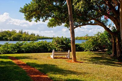 1012 Mangrove Drive- January 26, 2012-167