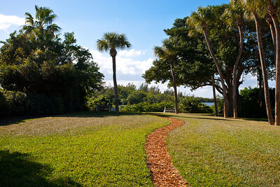 1012 Mangrove Drive- January 26, 2012-162
