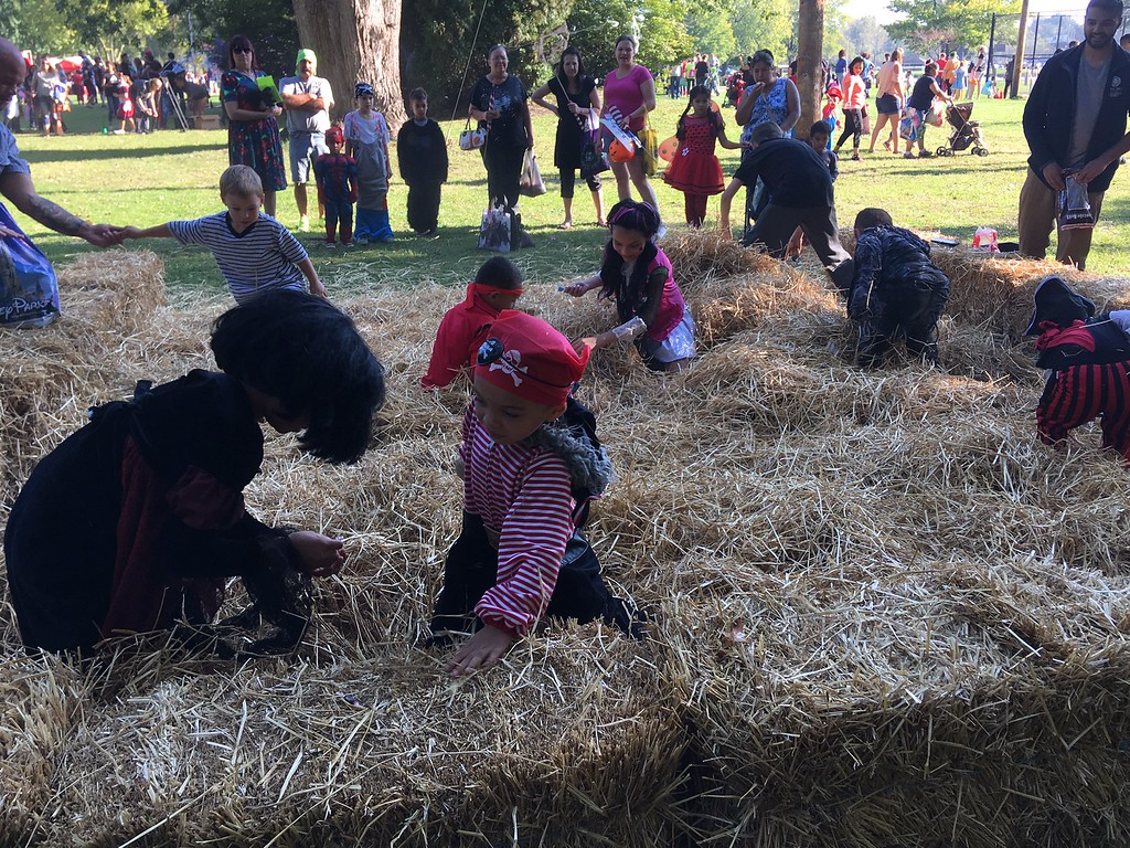 . Children dressed in their Halloween glory frolic in the hay Oct. 14 at Painesville Fall Fest & Trunk or Treat at Kiwanis Recreation Park. (Tracey Read-The News-Herald)