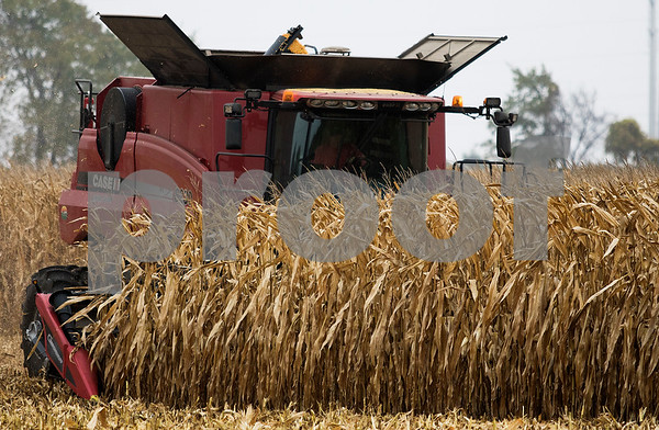 dnews_1015_Harvest_Pix_03