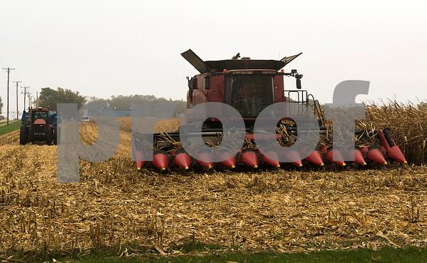 dnews_1015_Harvest_Pix_05