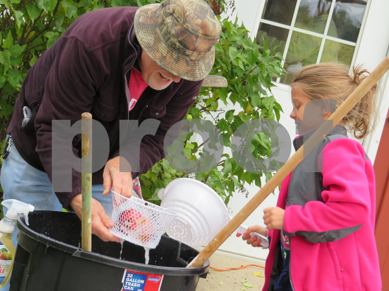 Sycamore History Museum volunteer Bill Mitchell (left) and Sycamore resident Elle Rongere, 8, wash some apples before they're made into cider Sunday during the Sycamore History Museum's Fall Festival.