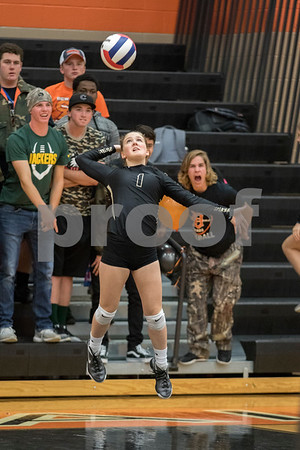 Sam Buckner for Shaw Media.<br /> Amanda Swedberg serves the ball in the first game against DeKalb on Tuesday October 17, 2017.