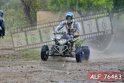 ALF 76483