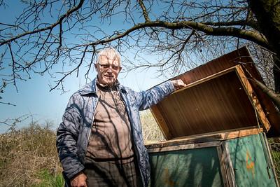 Tata przy ulu, Osiny, Poland