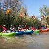 Verde River Institute Float Trip, Tapco to Tuzi, 10/20/17