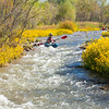 Verde River Institute Float Trip, Tapco to Tuzi, 10/20/17
