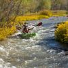 Verde River Institute Float Trip, Tapco to Tuzi, 10/22/17