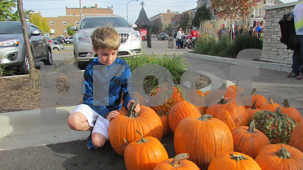 Logan Jones, 9, of Sycamore chooses a pumpkin during Denis and Jill Jagodzinski's annual pumpkin giveaway Saturday in downtown Sycamore.