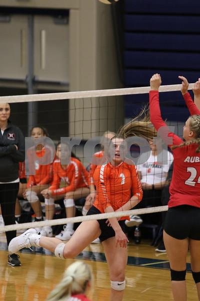 dc.sports.1023.dekalb volleyball