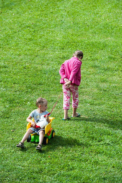 Children playing on the lawn, Poland
