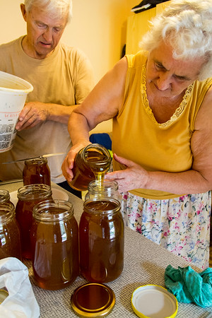 Honey is being distributed into jars, Osiny, Poland