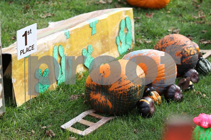 Pumpkins31