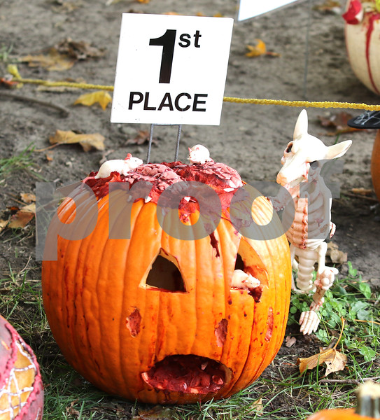 Pumpkins29