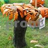 Pumpkins33