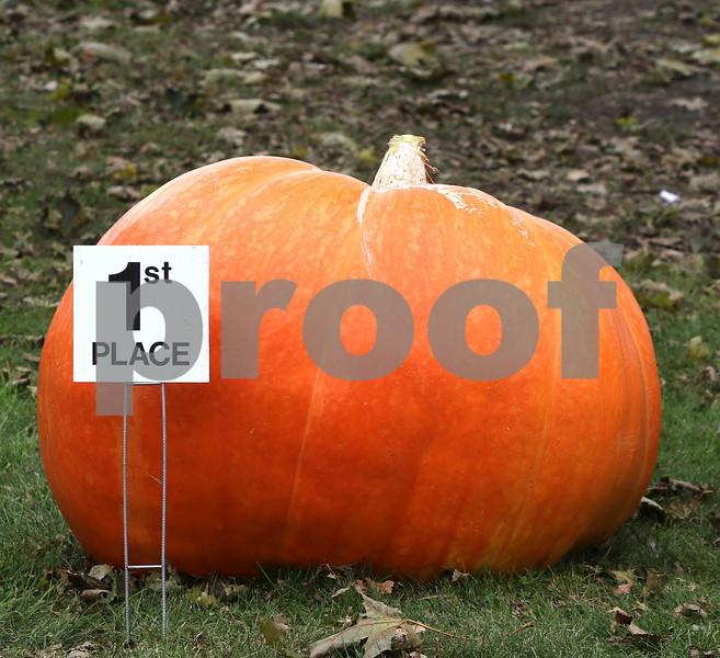 Largest pumpkin first place Mark Mourlas
