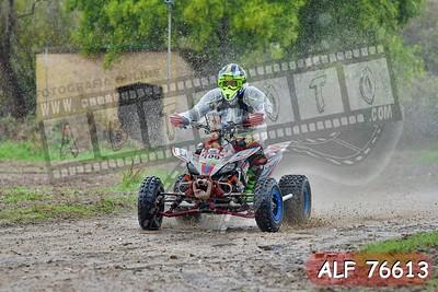 ALF 76613