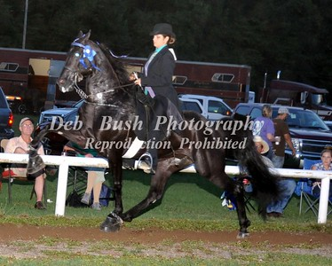CLASS 16A LADIES SPECIALTY ACTION RACKING