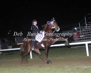 CLASS 46  WALKING HORSE STAKE SPECIALTY  TC