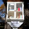 NeighborhoodLibrary1109 Falcigno 01