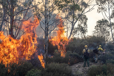 U.S. fire fighters Scott Ebell, left, with the National Park Services, and Clay Stephens, with the Bureau of Land Management, are part of a joint Australian and U.S. strike team blacklining an area in order to control a bushfire and protect nearby structures, in Alpine National Park near Omeo, Victoria, Australia, January 12, 2020. The Australian firefighters are with Country Fire Authority Australia and the U.S. team is the third rotation in for 28 days and they come from five different U.S. agencies, the U.S. Forest Service, U.S. Fish and Wildlife, Bureau of Land Management, Bureau of Indian Affairs and the National Park Services.
