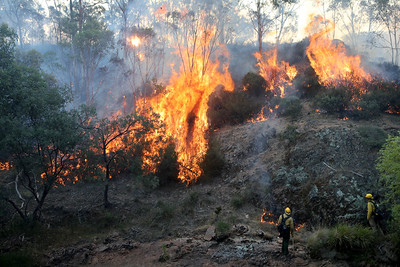 Firefighters from a joint Australian and U.S. strike team keep an eye on a bush fire as they blackline an area in order to control the fire and protect nearby structures, in Alpine National Park near Omeo, Victoria, Australia, January 12, 2020. The Australian firefighters are with Country Fire Authority Australia and the U.S. team is the third rotation in for 28 days and they come from five different U.S. agencies, the U.S. Forest Service, U.S. Fish and Wildlife, Bureau of Land Management, Bureau of Indian Affairs and the National Park Services.