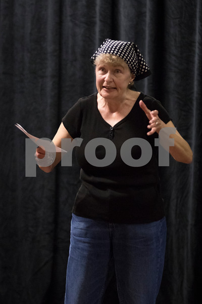 Sam Buckner for Shaw Media.<br /> Deb Brubaker gives a brief history of the Stage Coach Players theaters over the years during rehersal on Tuesday November 1, 2016.