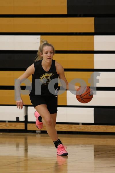 dc.sports.1112.sycamore girls basketball ADV