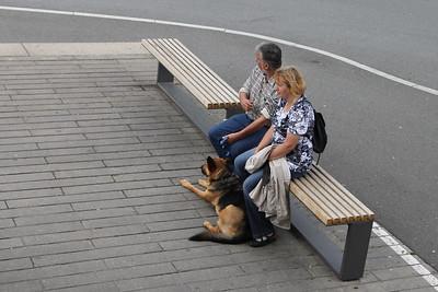 Loving couple with dog