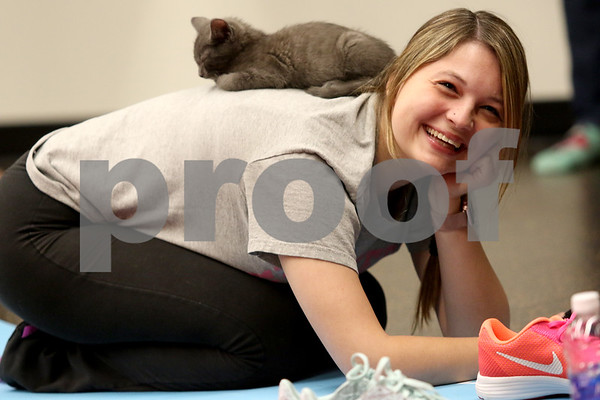dnews_1108_Cat_Yoga_08