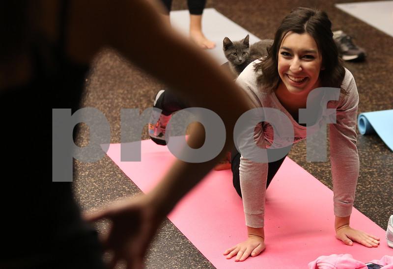 dnews_1108_Cat_Yoga_12