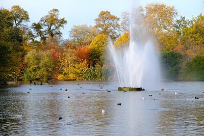 Autumn, Victoria Park, London, United Kingdom