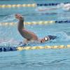 swim_crn018
