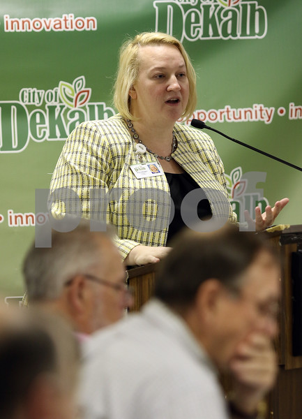 dnews_1115_County_Budget_10