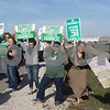 dnews_1117_Picketers_Picketing_03