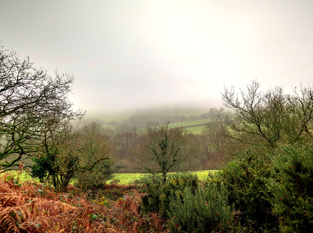The mist is beginning to clear